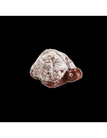 Tartaruga di cioccolato...